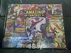 16x20 Stan Lee Autographed Poster